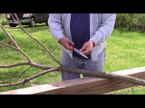 Bushcraft Gear - Eversaw 8.0 folding saw