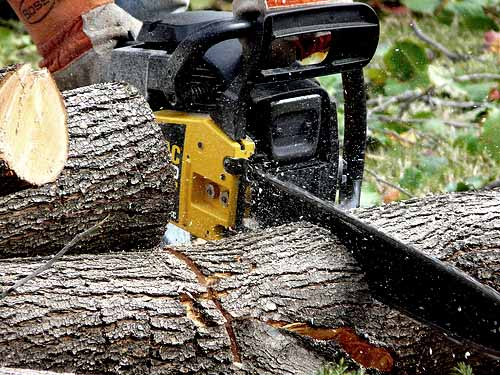 Best 60cc Chainsaw