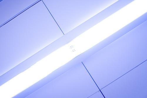 brightest t12 bulbs